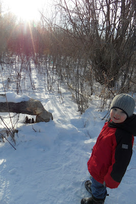 beaver creek in winter