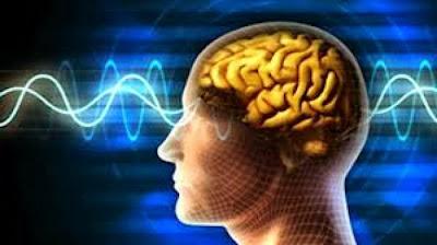 8 Cara Mempertajam Daya Ingat Otak Manusia