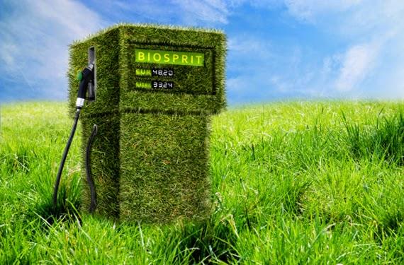 Els Biocarburants Baixen un 18% la seva Contribució al PIB del 2013