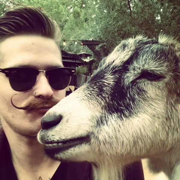 Funny animals of the week - 20 December 2013 (40 pics), goat selfies with human