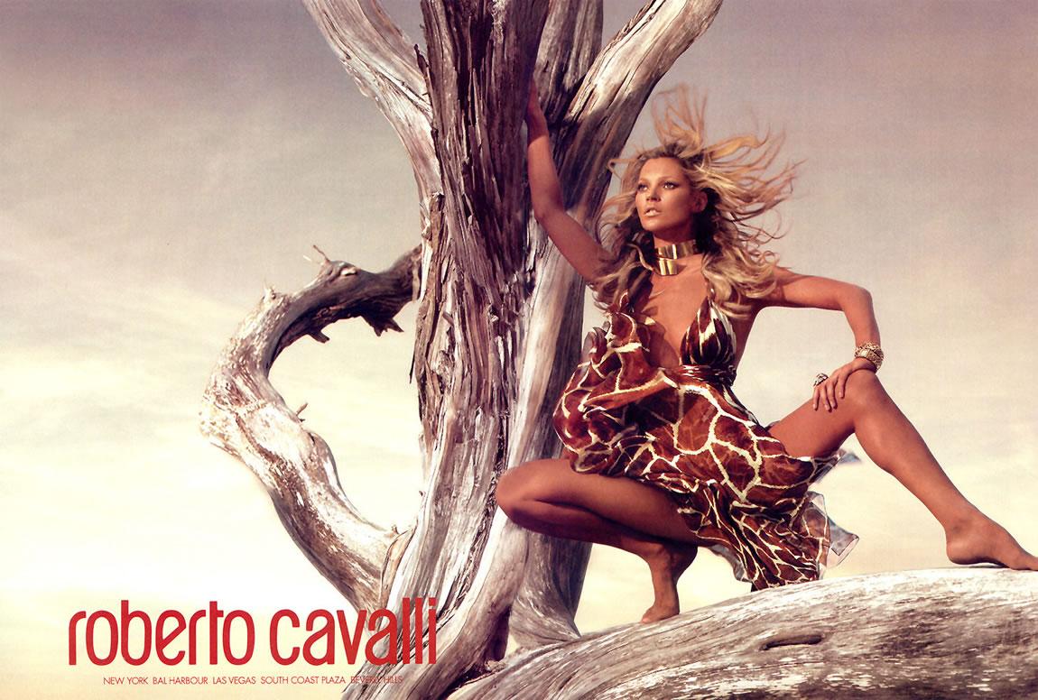 http://2.bp.blogspot.com/-WBcY1a4w6-I/Tb-8IFs3nKI/AAAAAAAAABs/yIw3CCkhxGQ/s1600/Roberto-Cavalli-Ad-kate-moss-236868_1150_776.jpg
