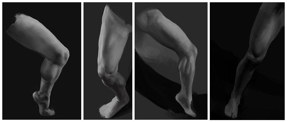 [Image: leg_studies01.jpg]