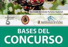 BASES CONCURSO CANTE FESTIVAL INTERNAC. CANTE FLAMENCO DE LO FERRO 2017