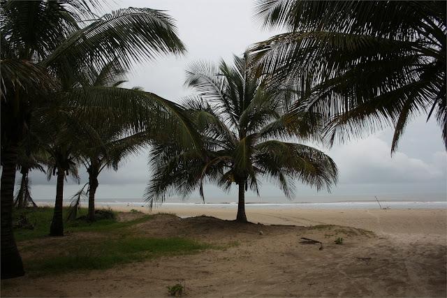 La playa está a escasos metros del campement.