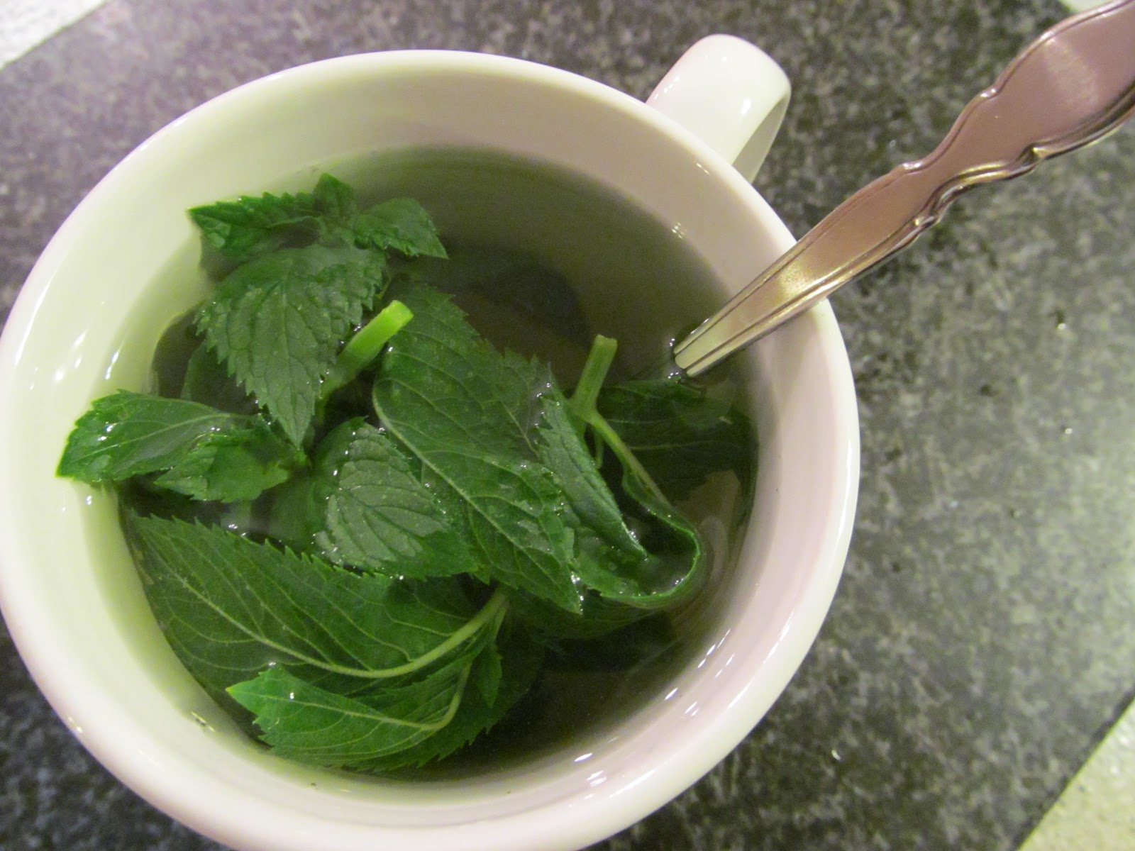 fresh mint tea ingredients handful of fresh mint hot water