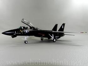Máy bay mô hình tĩnh F-14A Tomcat VX-4 Evaluators Vandy hiệu Witty Wings tỉ lệ 1:72