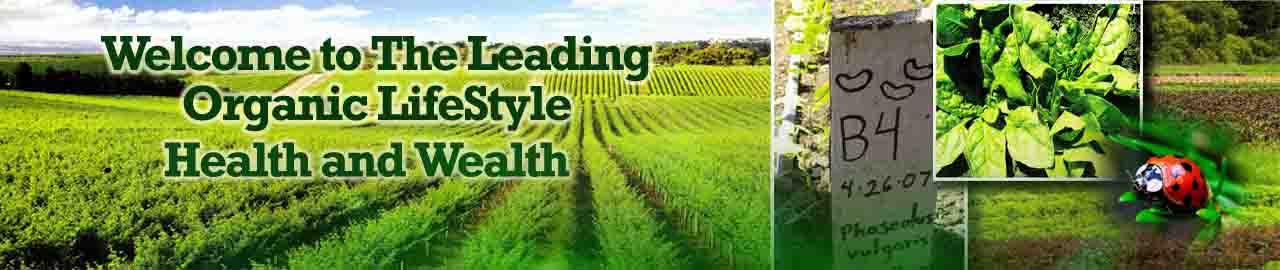 Organic Lifestyle Gaya Hidup Organik
