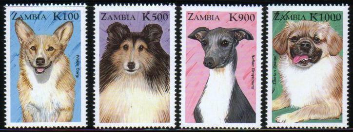 1999年ザンビア共和国 ウェルシュ・コーギー、シェットランド・シープドッグ、イタリアン・グレーハウンド、チベタン・スパニエルの切手