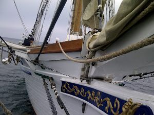 The Irving Johnson's Bow