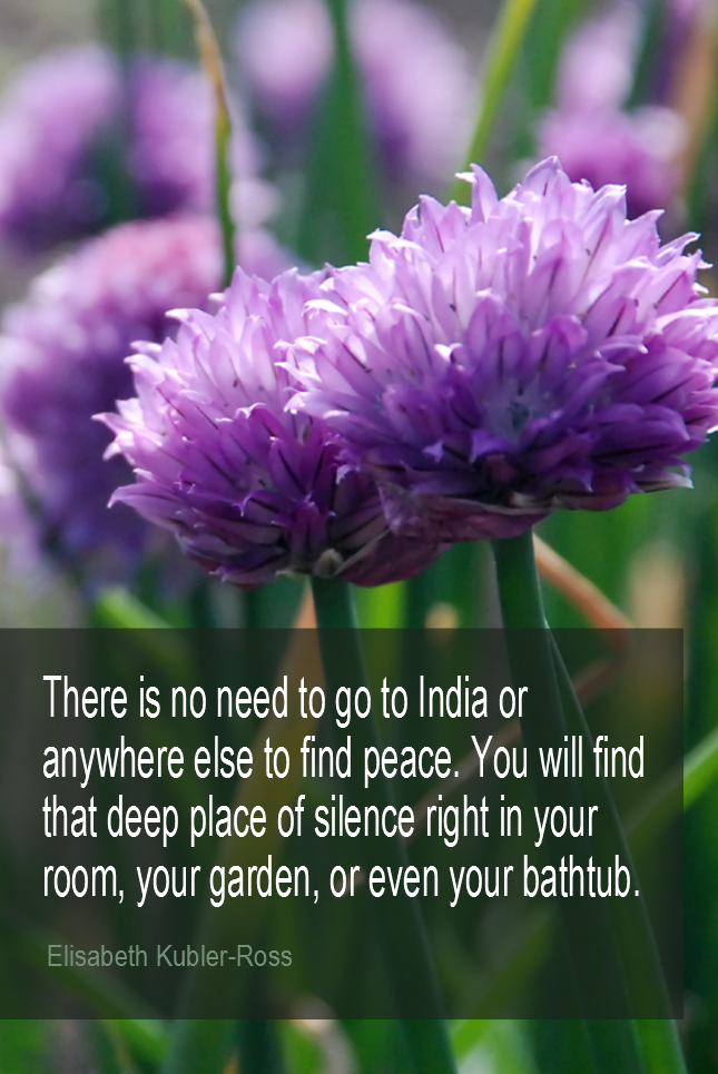 visual quote - image quotation for PEACE - There is no need to go to India or anywhere else to find peace. You will find that deep place of silence right in your room, your garden or even your bathtub. - Elisabeth Kubler-Ross
