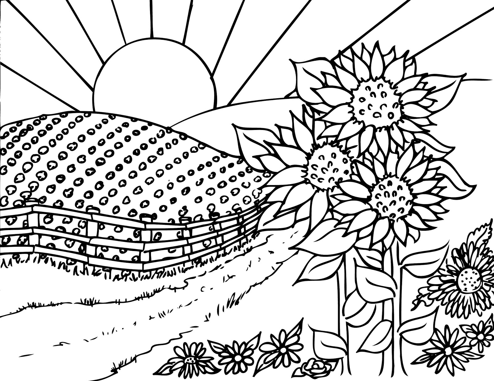 Birdhouse coloring sheet - Whimsical Birdhouse Coloring Page