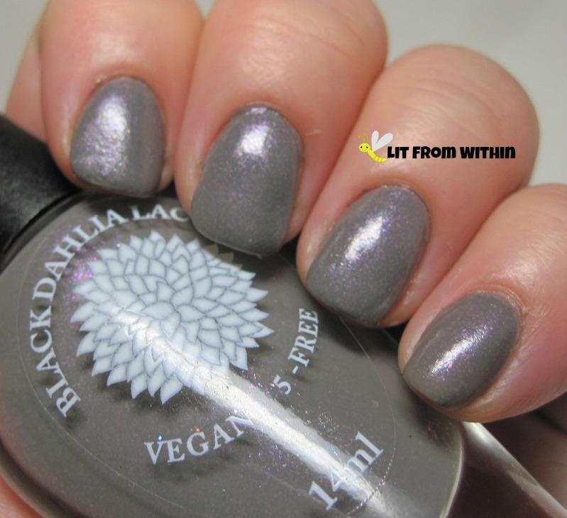 Black Dahlia Japanese Painted Fern, a medium grey with purple shimmer