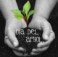 1 DE SETIEMBRE: DÍA DEL ÁRBOL