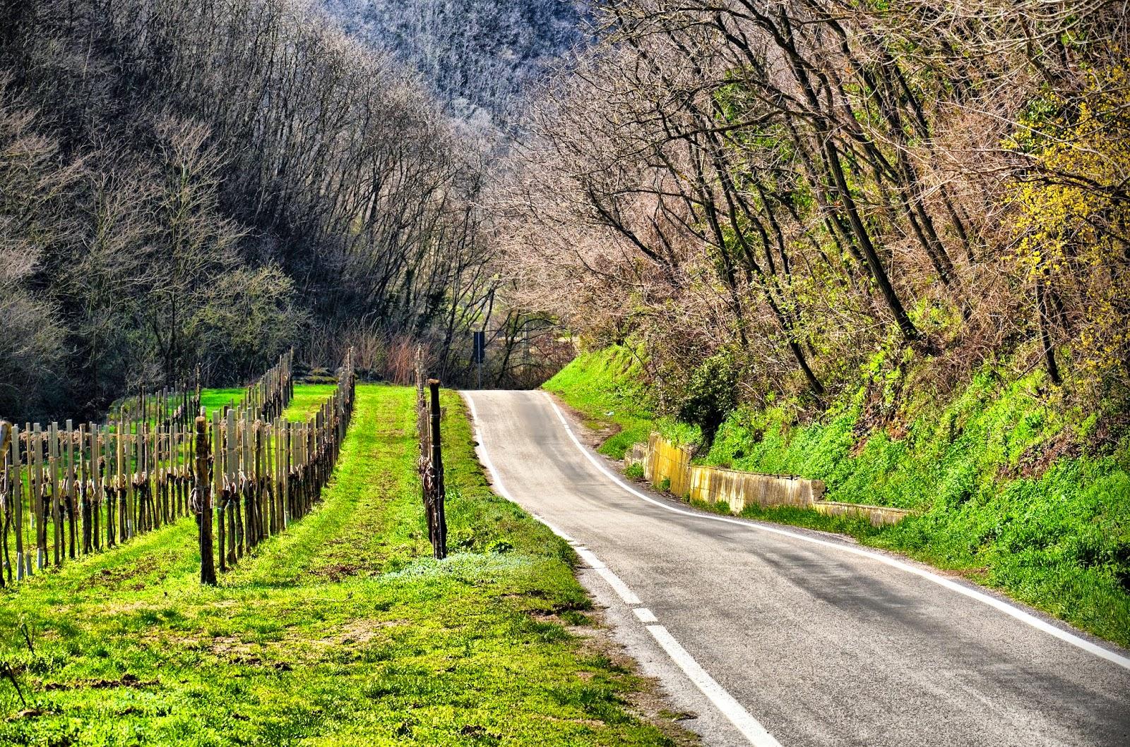 cycling veneto italy