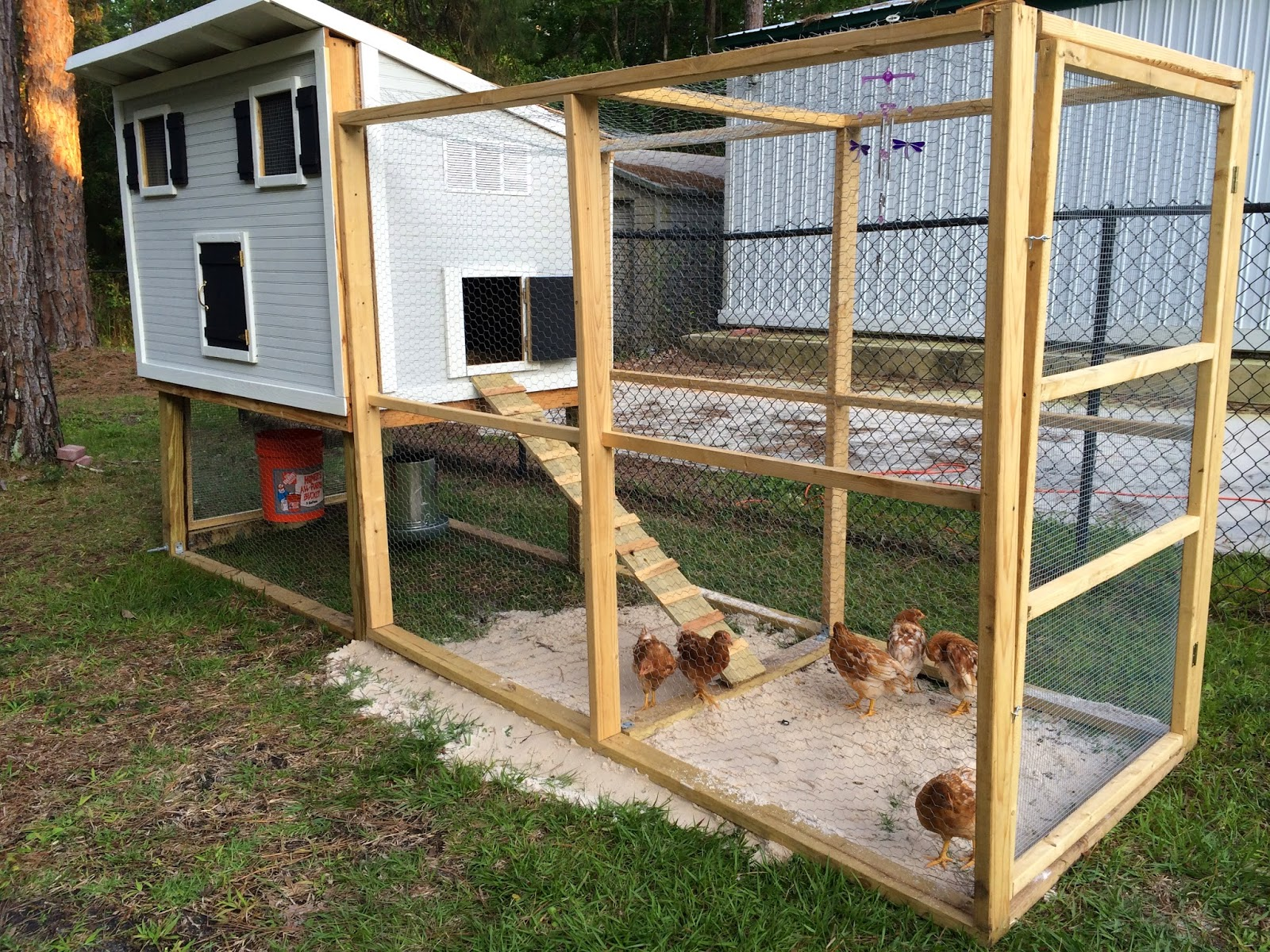 Fabulously vintage i built a chicken coop and i want to for Small chicken house plans