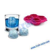 Brain Ice Mold