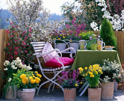 This and that in my treasure box spring inspiration for Small colourful garden ideas