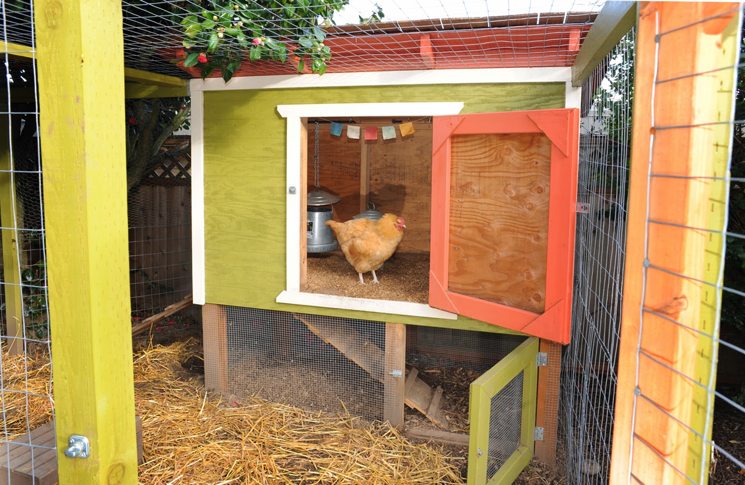 Chicken house plans how to build a chicken ark Make your own hen house