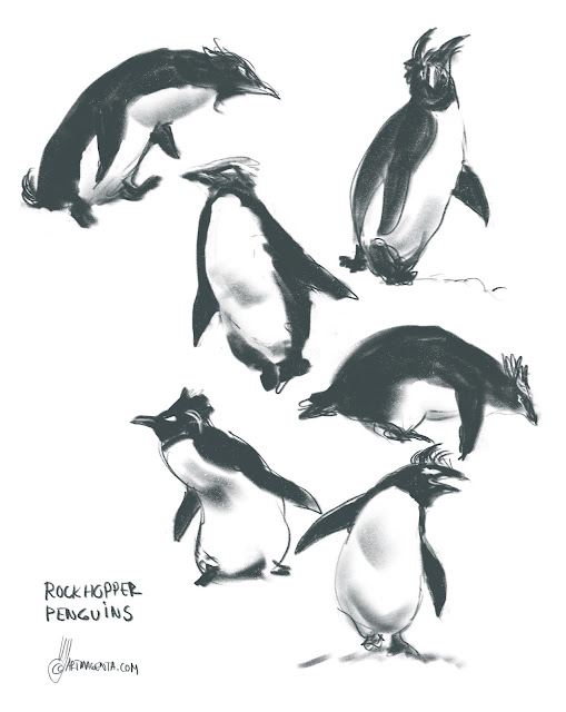 Rockhopper penguins gesture drawing by Artmagenta