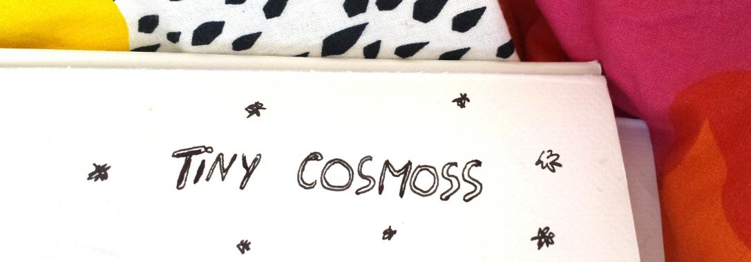 Tiny Cosmoss