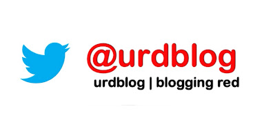 follow urdblog on twitter