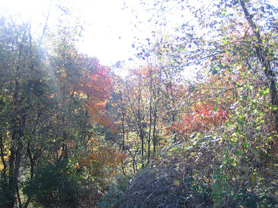 I need crack keygen of bios agent plus. . Reply Quote. . Last Post: Guest