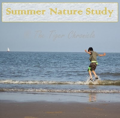 http://thetigerchronicle.blogspot.co.uk/search/label/nature%20study-summer