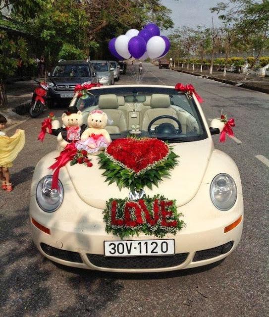 cho thuê xe cưới mui trần VolkWagen Beetle