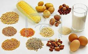 Memenuhi Tubuh Kita Dengan Makanan Protein Tinggi