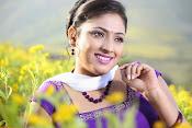 Hari priya photo shoot among yellow folwers-thumbnail-15
