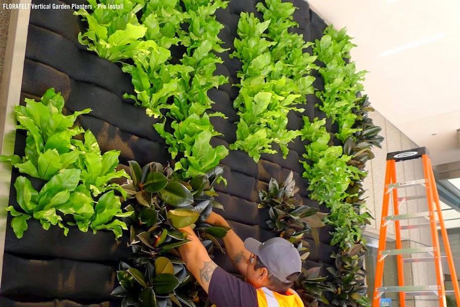 Il giardino delle naiadi soluzioni architettoniche verde verticale seconda parte - Como hacer jardines verticales ...