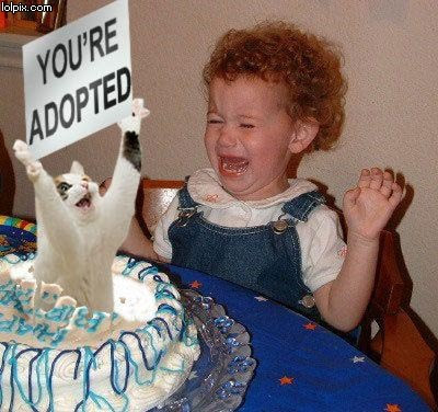 385482_funny_birthday_COPIOUS_AMOUNTS_OF_FUNNY_PICTURES-s400x376 ...