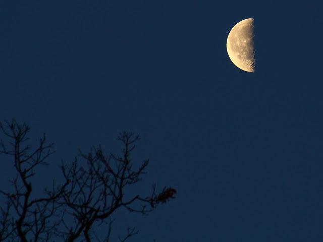 Trăng hạ huyền ngày 17 tháng 4 năm 2009. Tác giả : p.csizmadia trên Flickr.