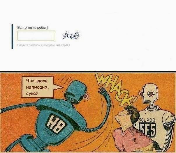 Вы точно не робот? Что здесь написано, сука?