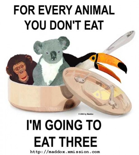bear eating a vegan