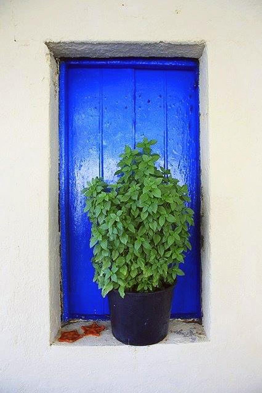 Ελλάδα, με άρωμα από θυμάρι, βασιλικό και ρίγανη!!