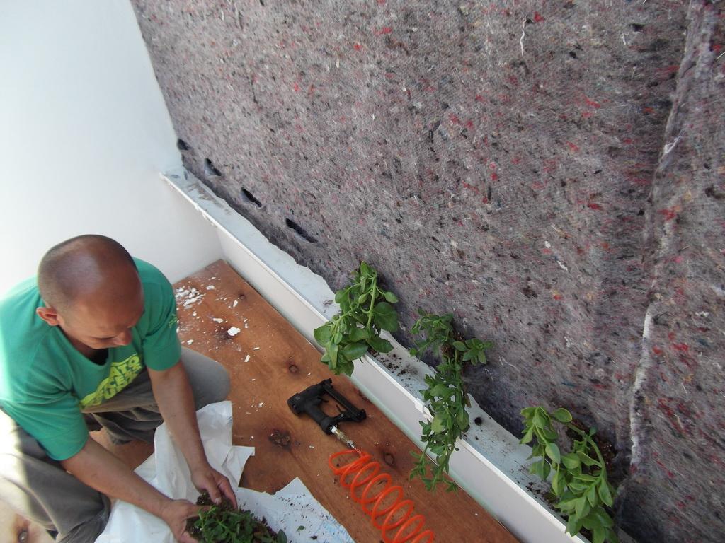 Jardin vertical en argentina primer jardin vertical gwall - Estructura jardin vertical ...