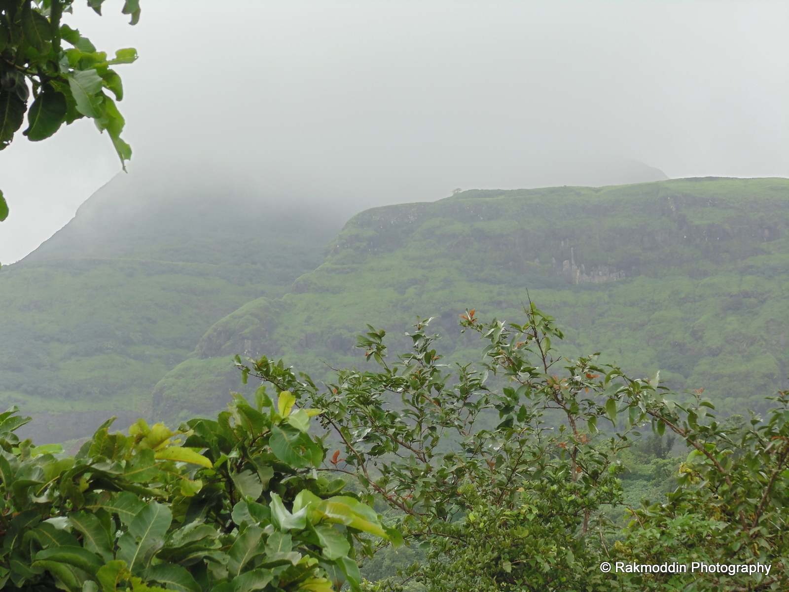 Scenic towards lonavala via pavana dam backwaters