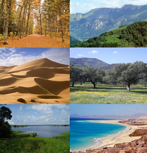 El secreto de los paisajes el clima - Tipos de paisajes ...