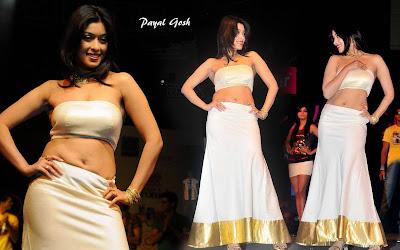 Actress Payal Gosh in white Blouse Photos