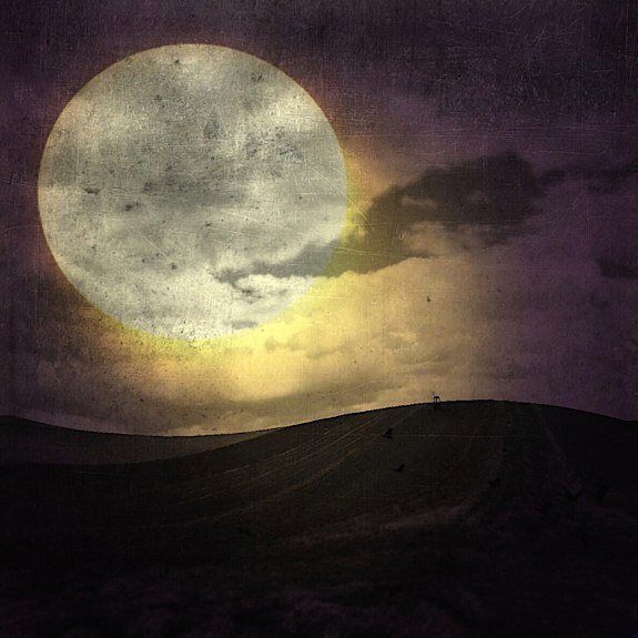 Moonlight © Jerzy Jachym