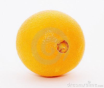 variedad naranja: