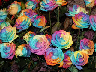 rainbow+rose+6 A Gift of Survival........