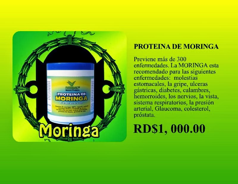 PROTEINA DE MORINGA
