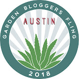 I'm Flinging in Austin, Texas, May 3-6, 2018!