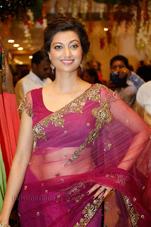 Hamsa Nandini in Designer Saree at Kalamandir Showroom Launch