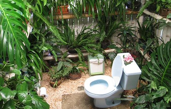 JORNAL CMA  ARQUITETURA & DECORAÇÃO  BANHEIRO EXÓTICO TEM PLANTAS PO -> Decoracao Banheiro Plantas