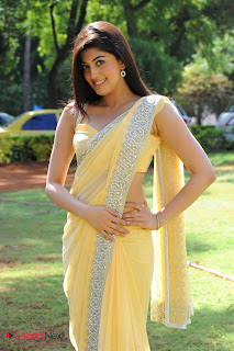 Praneetha  Picture Gallery in Yellow Saree  0001.jpg