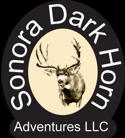Sonora Dark Horn Adventures