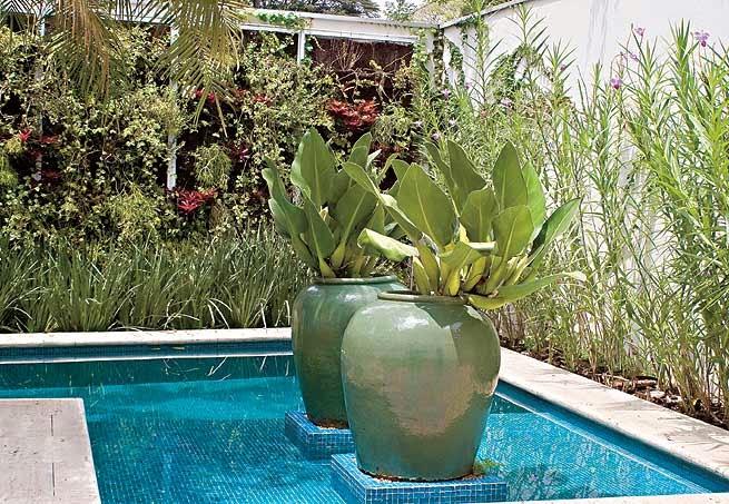 Construindo minha casa clean decora o da rea externa for Plantas para poner cerca de la piscina